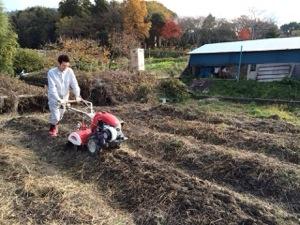 オーガニック畑仕事 Step2